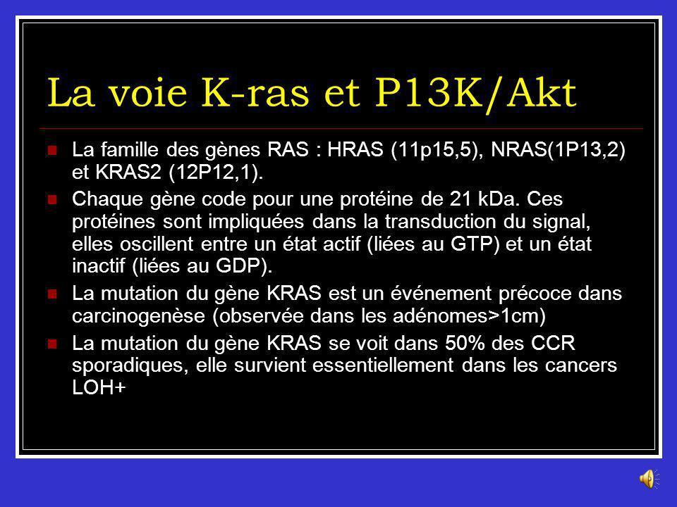 La voie K-ras et P13K/Akt La famille des gènes RAS : HRAS (11p15,5), NRAS(1P13,2) et KRAS2 (12P12,1).