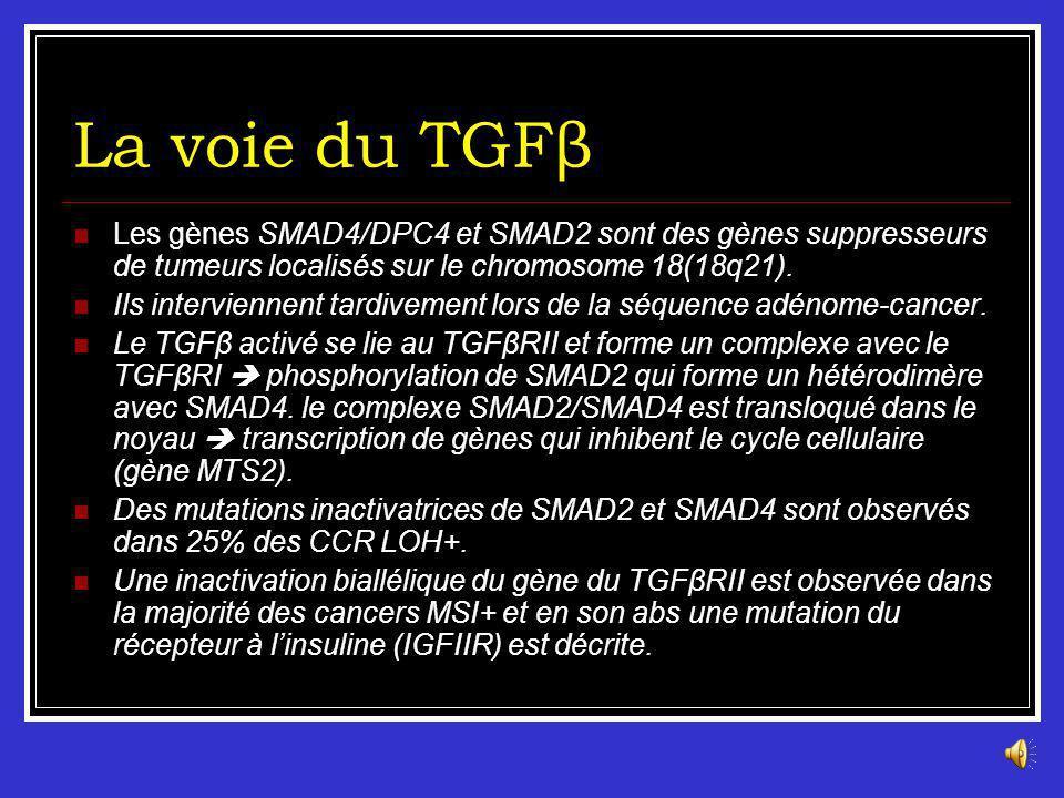 La voie du TGFβ Les gènes SMAD4/DPC4 et SMAD2 sont des gènes suppresseurs de tumeurs localisés sur le chromosome 18(18q21).