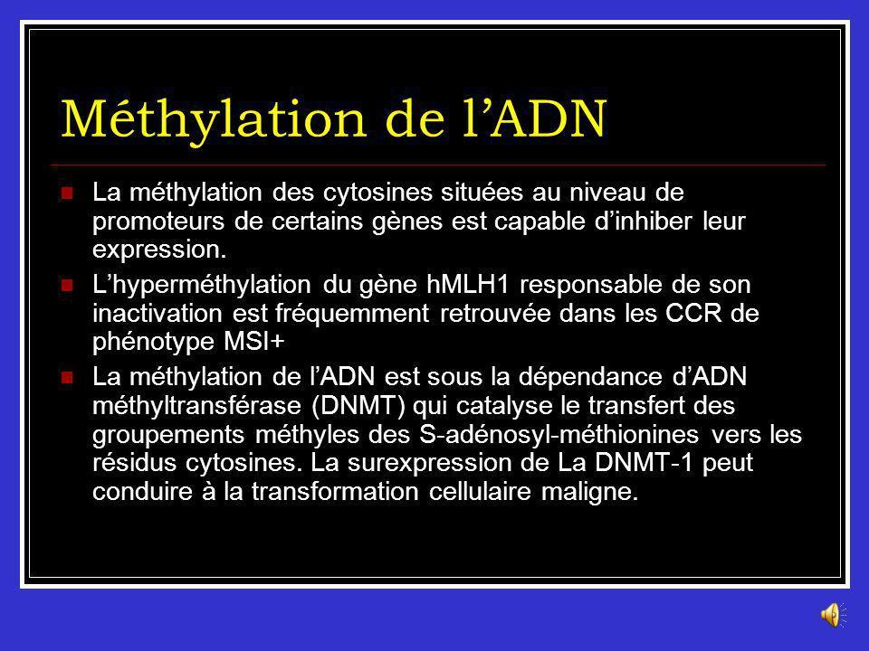 Méthylation de l'ADN La méthylation des cytosines situées au niveau de promoteurs de certains gènes est capable d'inhiber leur expression.