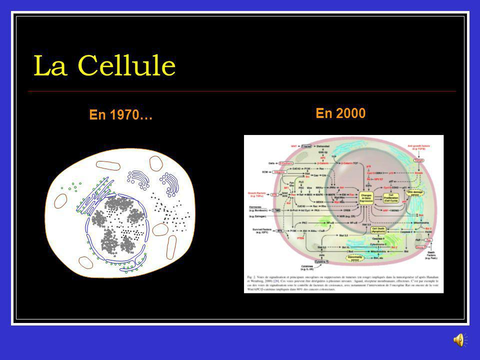 La Cellule En 1970… En 2000