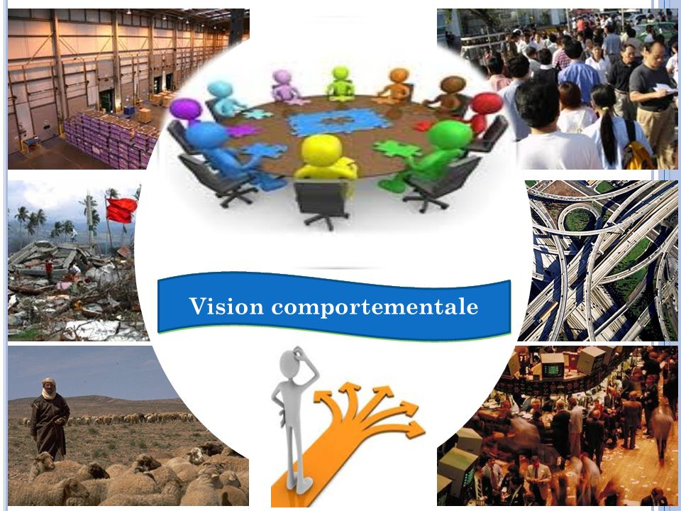 Vision comportementale