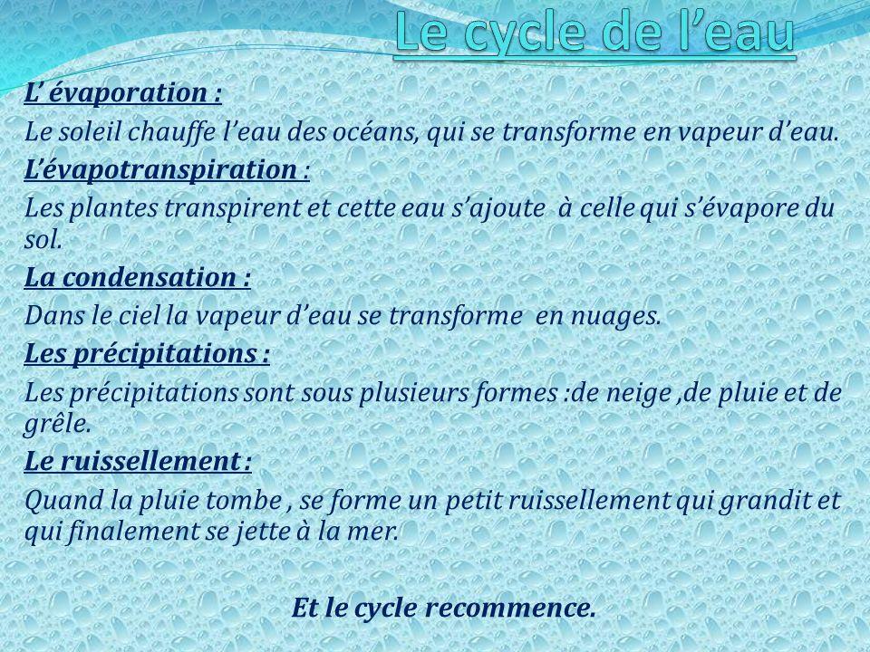 Le cycle de l'eau L' évaporation :