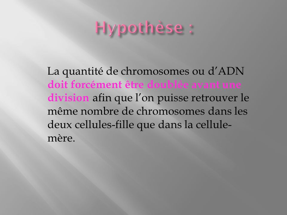 Hypothèse :