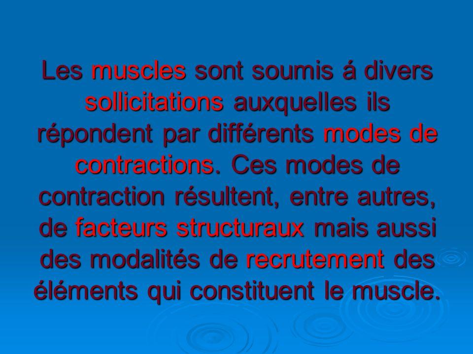 Les muscles sont soumis á divers sollicitations auxquelles ils répondent par différents modes de contractions.