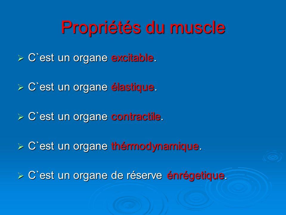 Propriétés du muscle C`est un organe excitable.