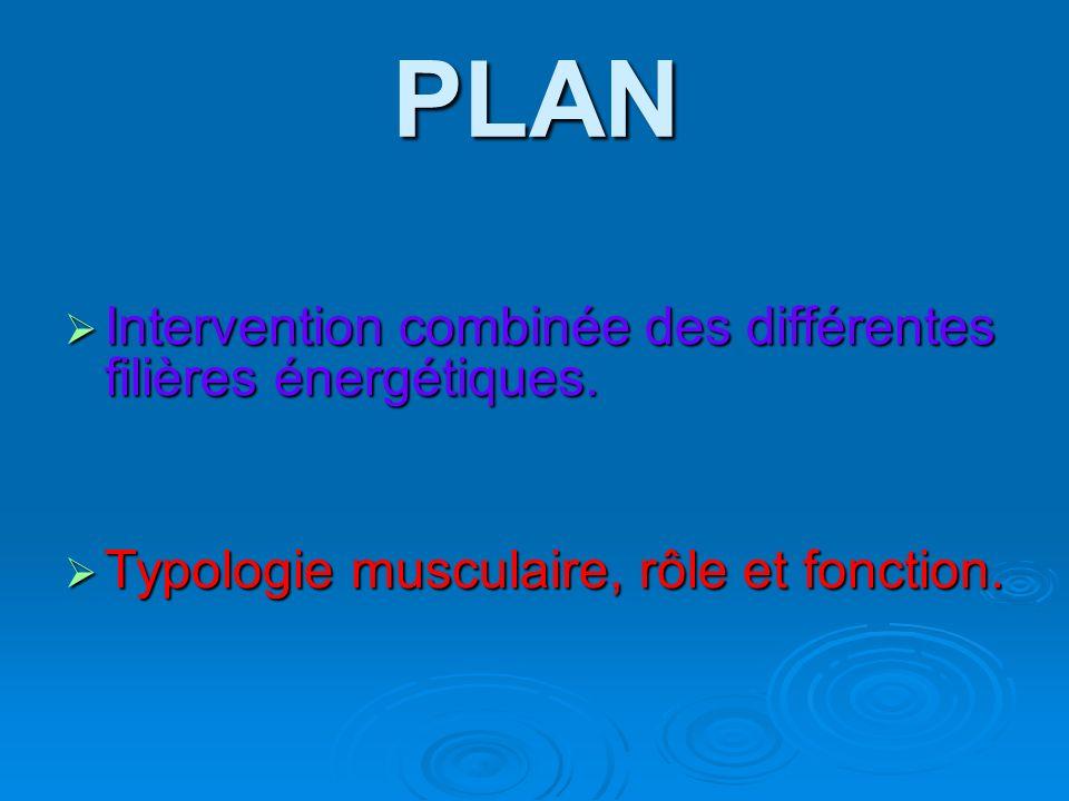 PLAN Intervention combinée des différentes filières énergétiques.