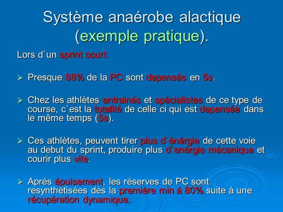 Système anaérobe alactique (exemple pratique).