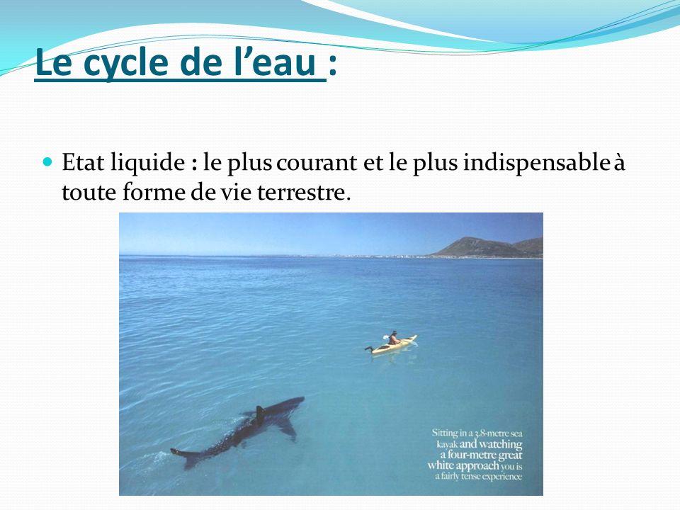 Le cycle de l'eau :Etat liquide : le plus courant et le plus indispensable à toute forme de vie terrestre.