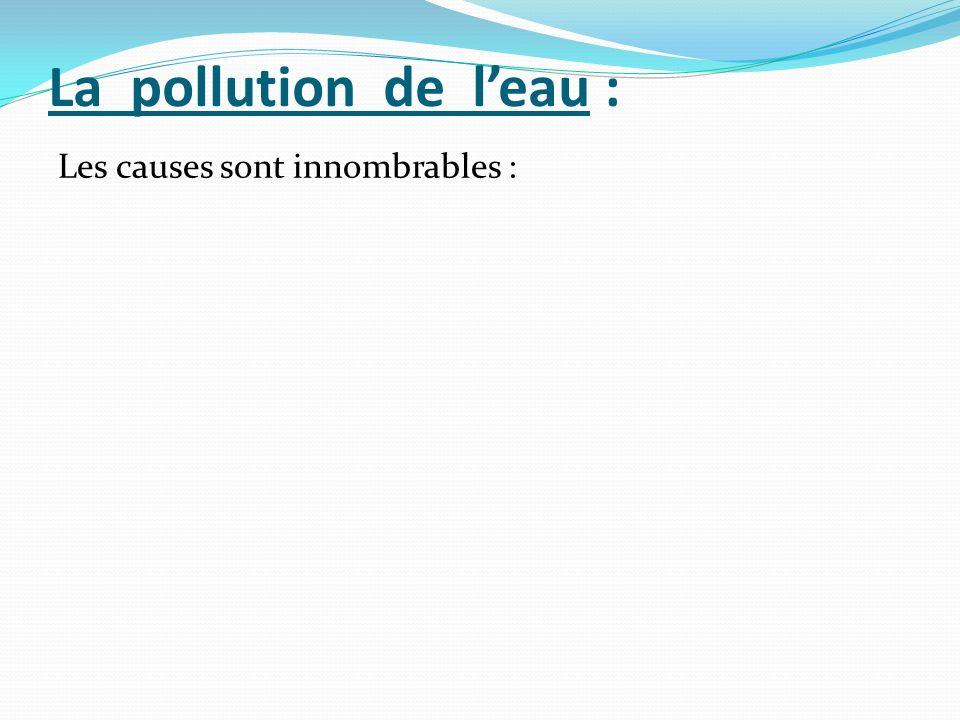 La pollution de l'eau : Les causes sont innombrables :