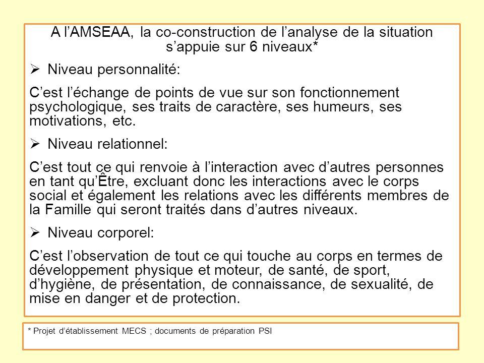 Janvier 2013 A l'AMSEAA, la co-construction de l'analyse de la situation s'appuie sur 6 niveaux* Niveau personnalité: