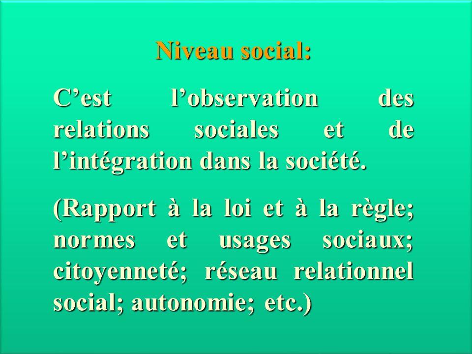 Janvier 2013 Niveau social: C'est l'observation des relations sociales et de l'intégration dans la société.