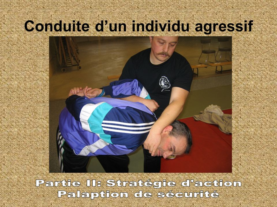 Conduite d'un individu agressif