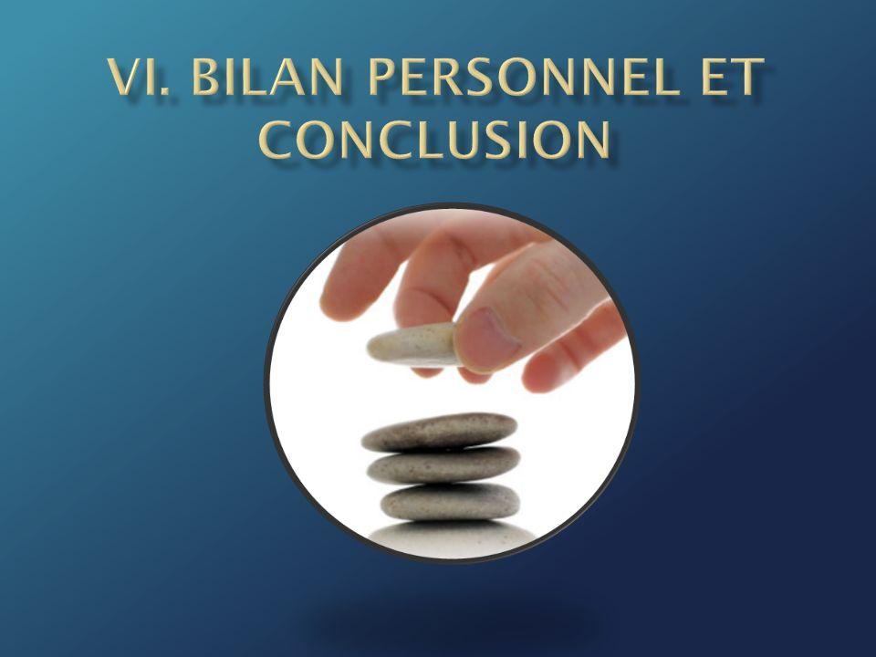 VI. Bilan personnel et Conclusion