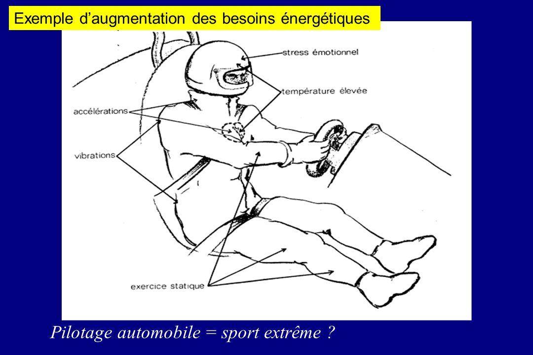 Pilotage automobile = sport extrême