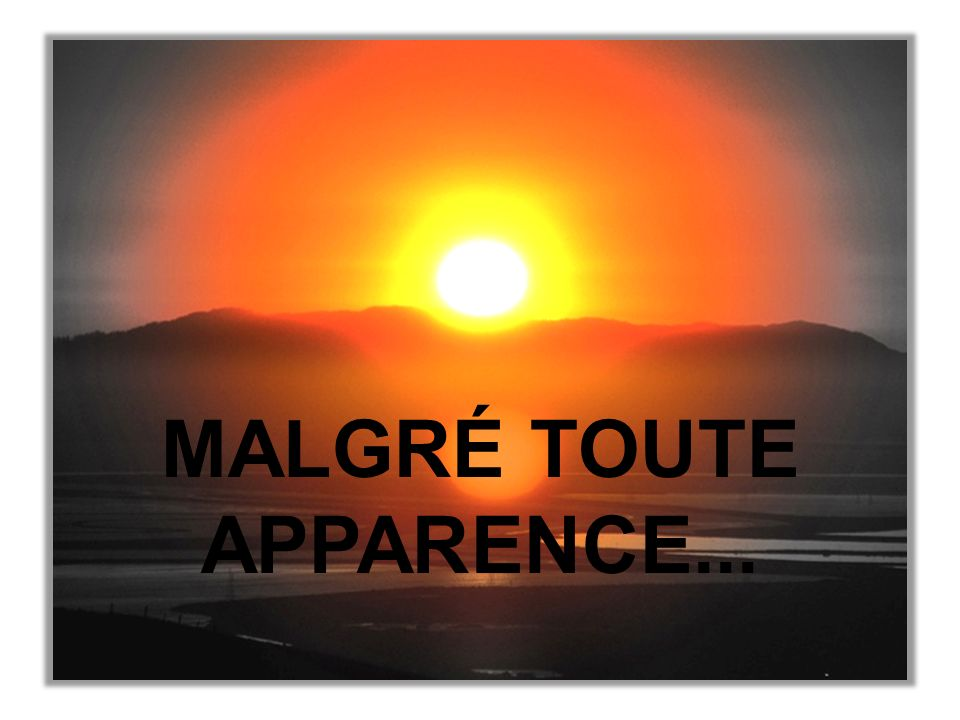 MALGRÉ TOUTE APPARENCE...