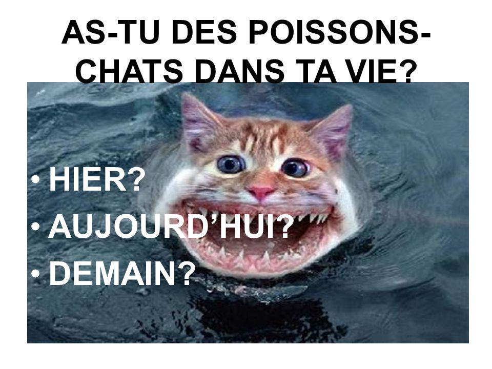 AS-TU DES POISSONS-CHATS DANS TA VIE