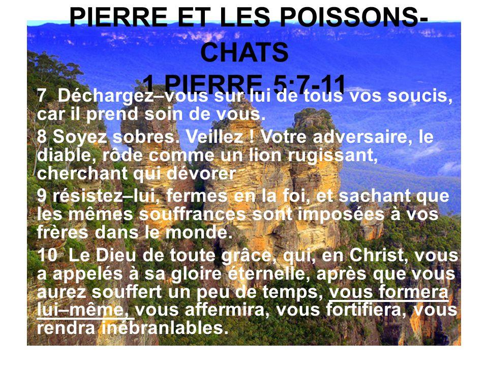 PIERRE ET LES POISSONS-CHATS 1 PIERRE 5:7-11