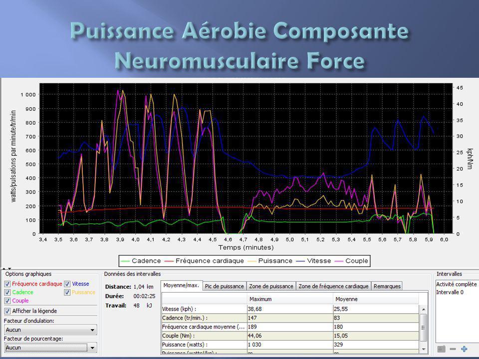 Puissance Aérobie Composante Neuromusculaire Force