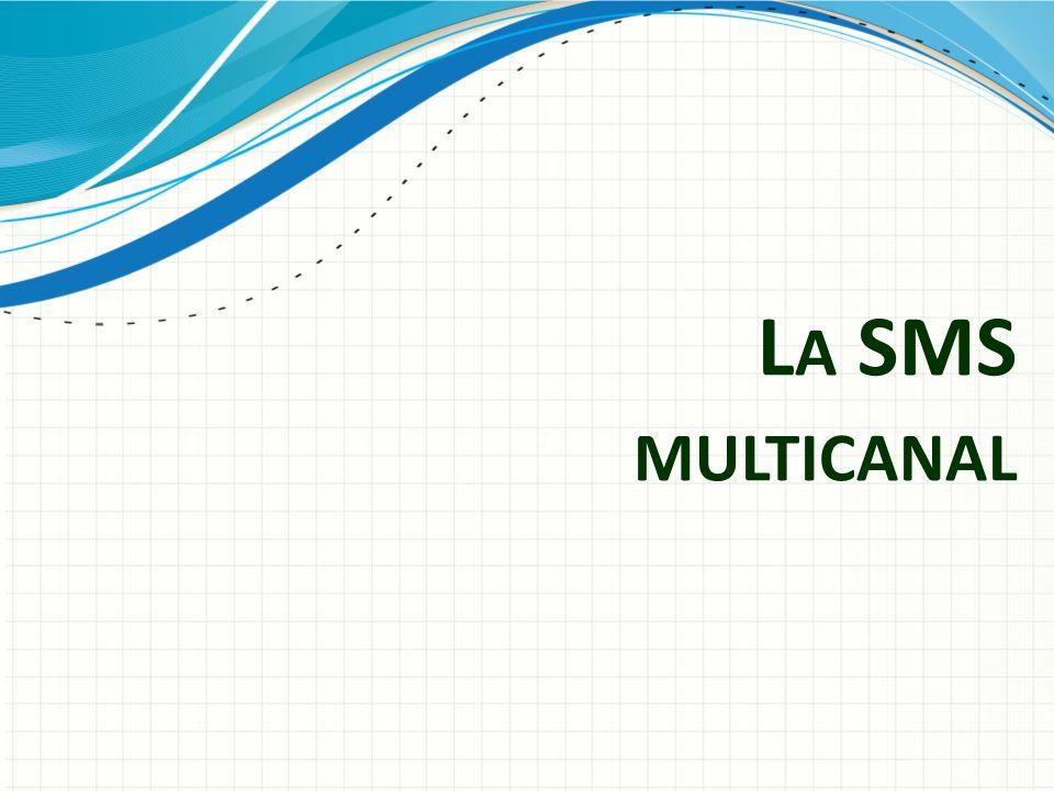 La SMS multicanal L'idée est de mettre en place la SMS multicanal qui permettrait de mesurer sur plusieurs longueurs d'onde en même temps.