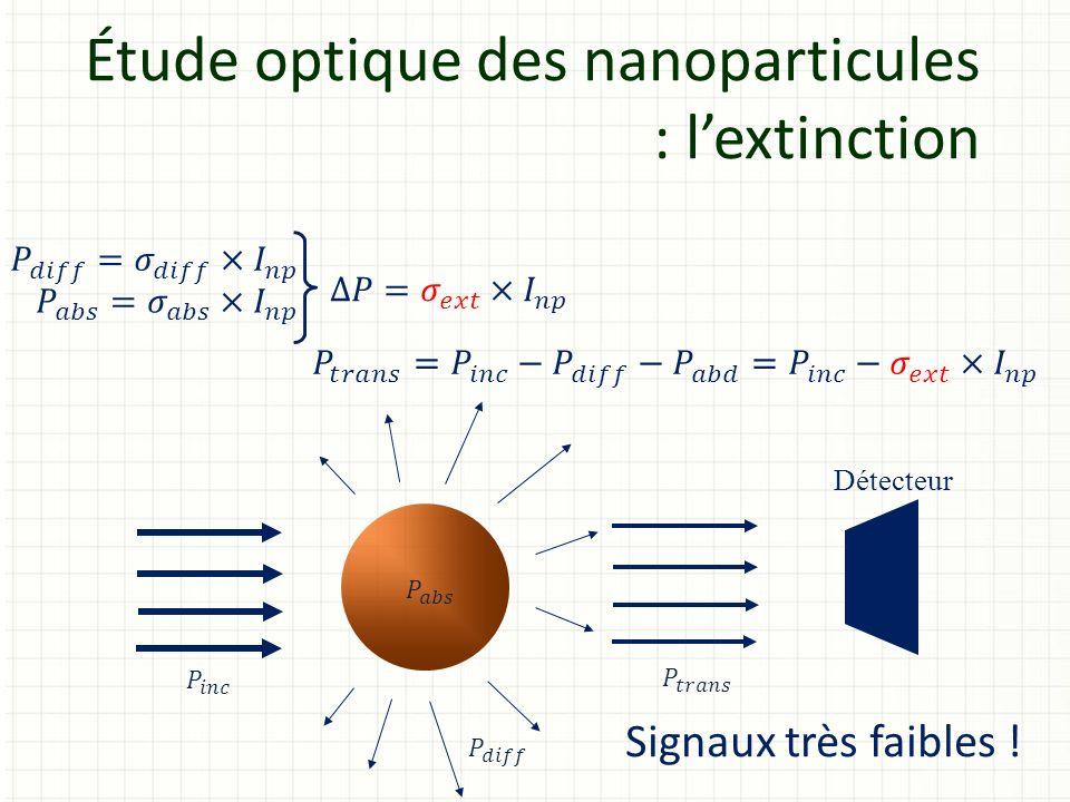 Étude optique des nanoparticules : l'extinction