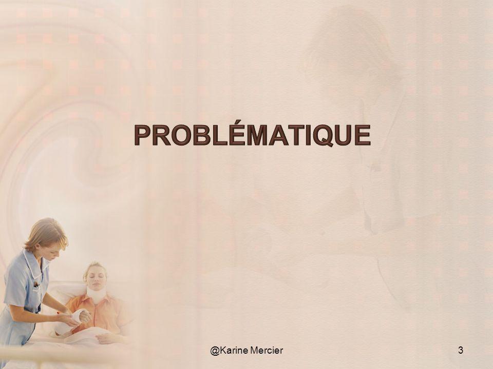Problématique @Karine Mercier