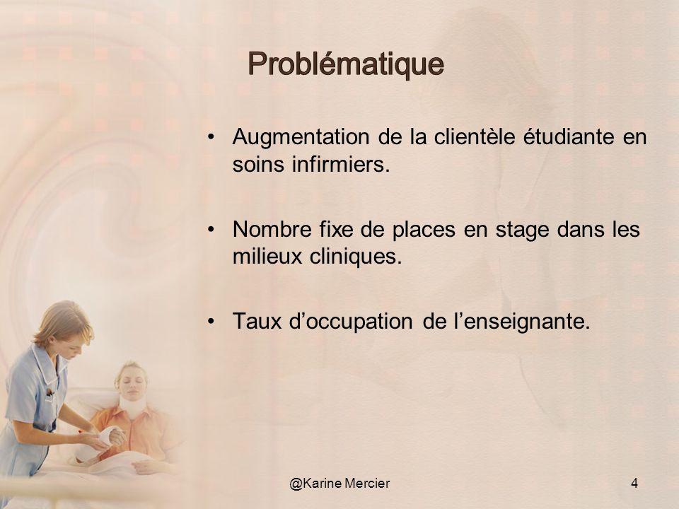 Problématique Augmentation de la clientèle étudiante en soins infirmiers. Nombre fixe de places en stage dans les milieux cliniques.