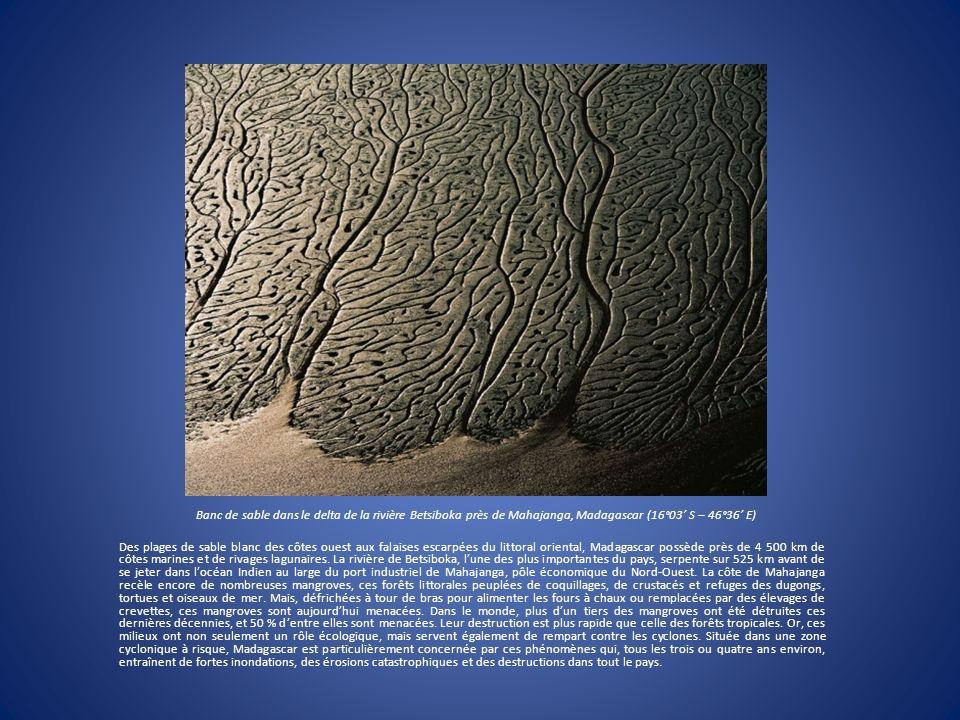 Banc de sable dans le delta de la rivière Betsiboka près de Mahajanga, Madagascar (16°03' S – 46°36' E)