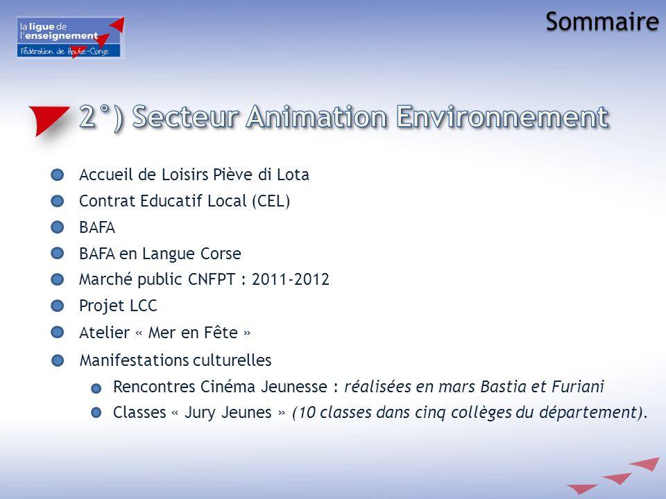 2°) Secteur Animation Environnement