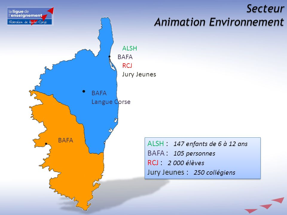 Animation Environnement