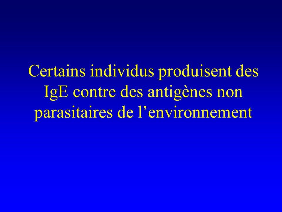 Certains individus produisent des IgE contre des antigènes non parasitaires de l'environnement