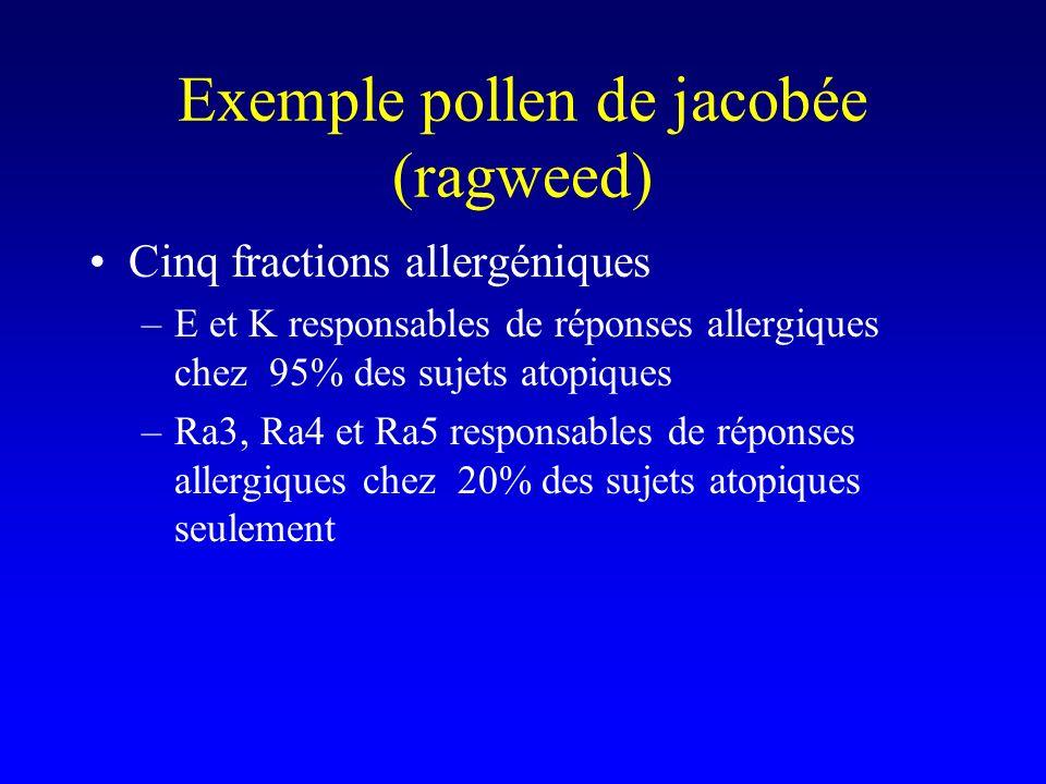 Exemple pollen de jacobée (ragweed)