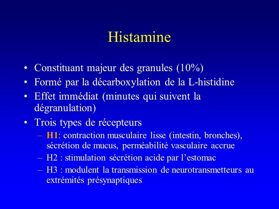 Histamine Constituant majeur des granules (10%)
