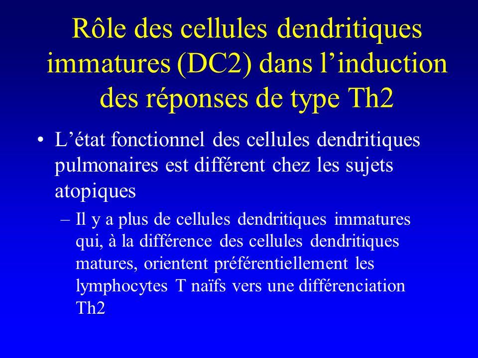 Rôle des cellules dendritiques immatures (DC2) dans l'induction des réponses de type Th2
