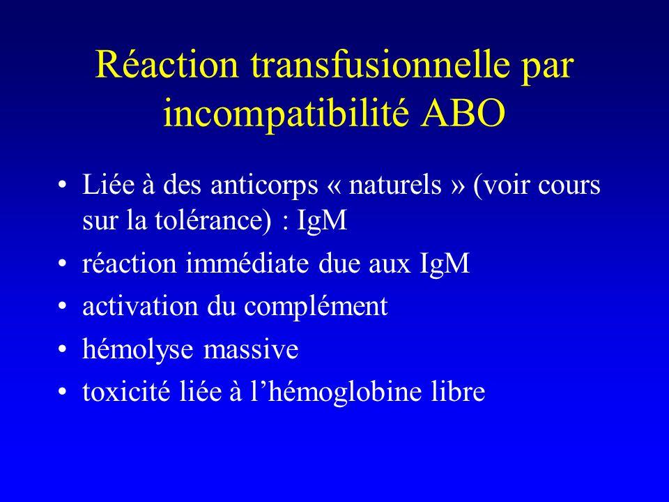 Réaction transfusionnelle par incompatibilité ABO