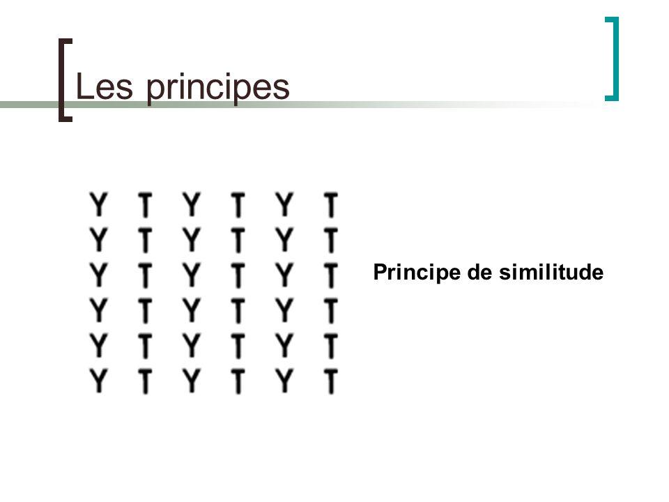 Les principes Principe de similitude
