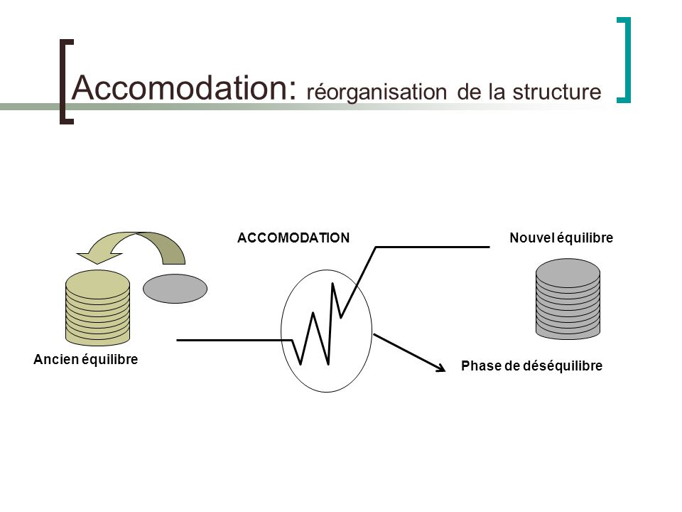 Accomodation: réorganisation de la structure