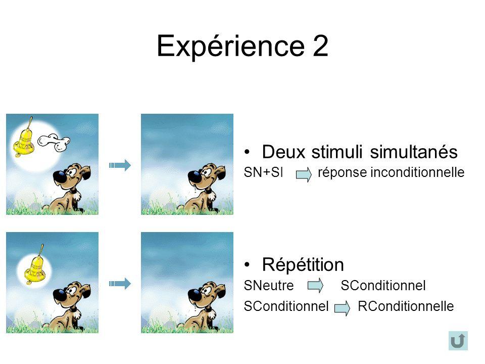 Expérience 2 Deux stimuli simultanés Répétition