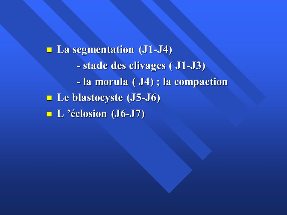 La segmentation (J1-J4) - stade des clivages ( J1-J3) - la morula ( J4) ; la compaction. Le blastocyste (J5-J6)