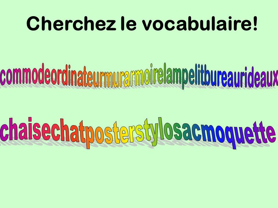 Cherchez le vocabulaire!