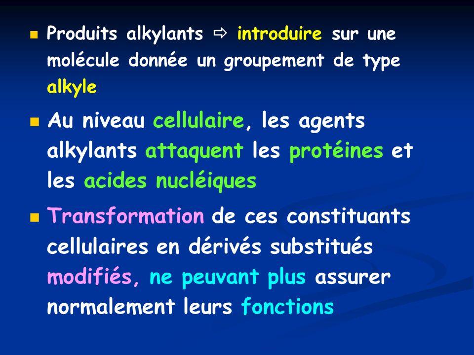 Produits alkylants  introduire sur une molécule donnée un groupement de type alkyle