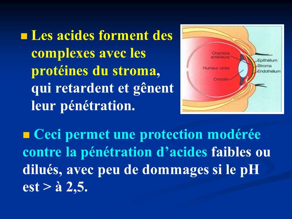 Les acides forment des complexes avec les protéines du stroma, qui retardent et gênent leur pénétration.
