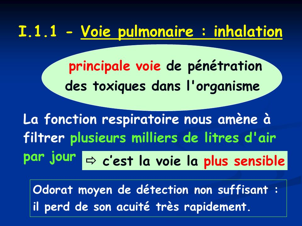 I.1.1 - Voie pulmonaire : inhalation