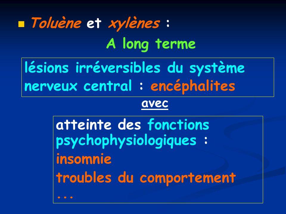 lésions irréversibles du système nerveux central : encéphalites