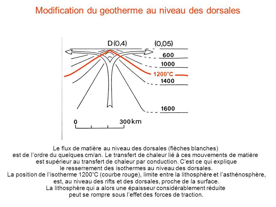 Modification du geotherme au niveau des dorsales