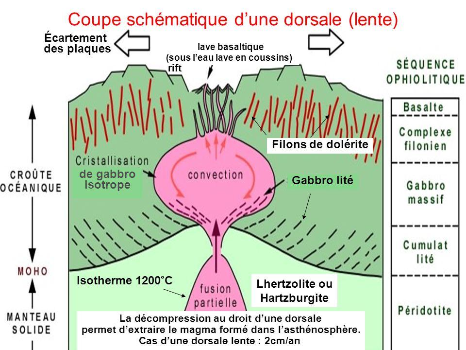 Futura sciences et wikipedia ppt video online t l charger - Theatre de la coupe d or ...