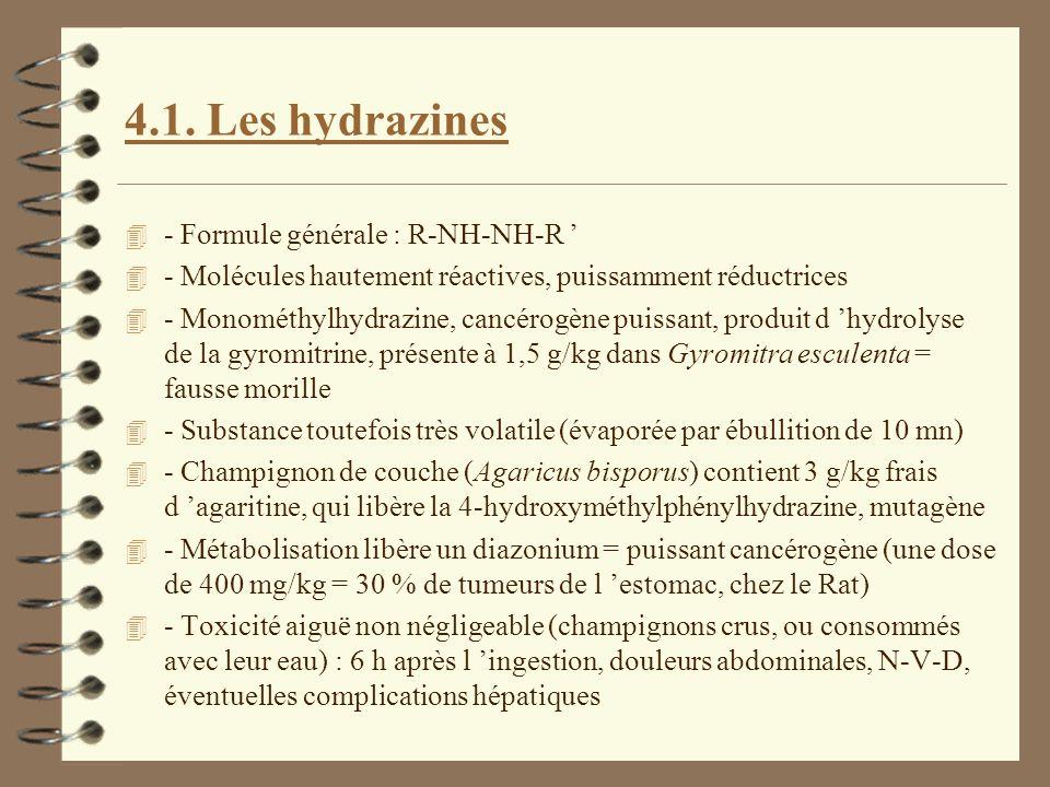4.1. Les hydrazines - Formule générale : R-NH-NH-R '