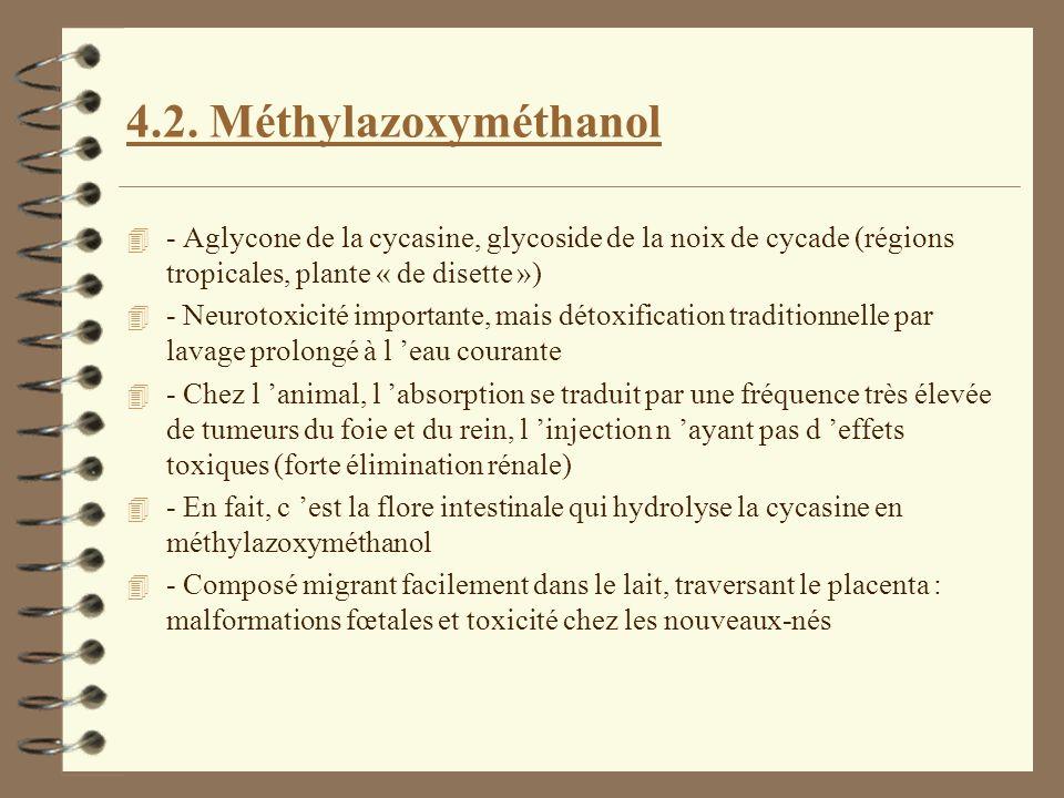 4.2. Méthylazoxyméthanol - Aglycone de la cycasine, glycoside de la noix de cycade (régions tropicales, plante « de disette »)