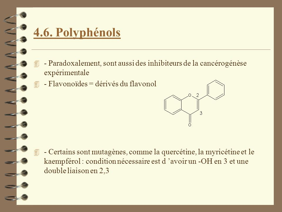 4.6. Polyphénols - Paradoxalement, sont aussi des inhibiteurs de la cancérogénèse expérimentale. - Flavonoïdes = dérivés du flavonol.
