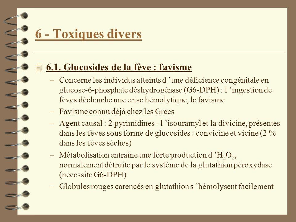 6 - Toxiques divers 6.1. Glucosides de la fève : favisme