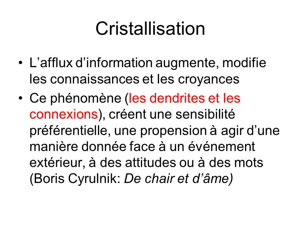 Cristallisation L'afflux d'information augmente, modifie les connaissances et les croyances.